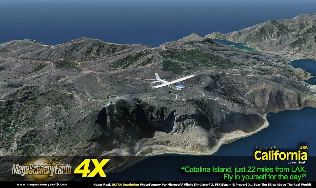 CALS-4X-1-02.jpg