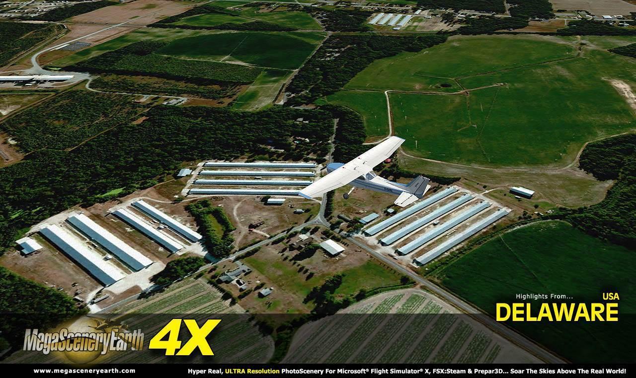 DE-4X-3-01.jpg