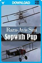 Rara-Avis-Sim-Sopwith-Pup-Download-PCAvi