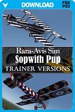 Rara-Avis-Sim-Sopwith-Pup-Trainer-Downlo