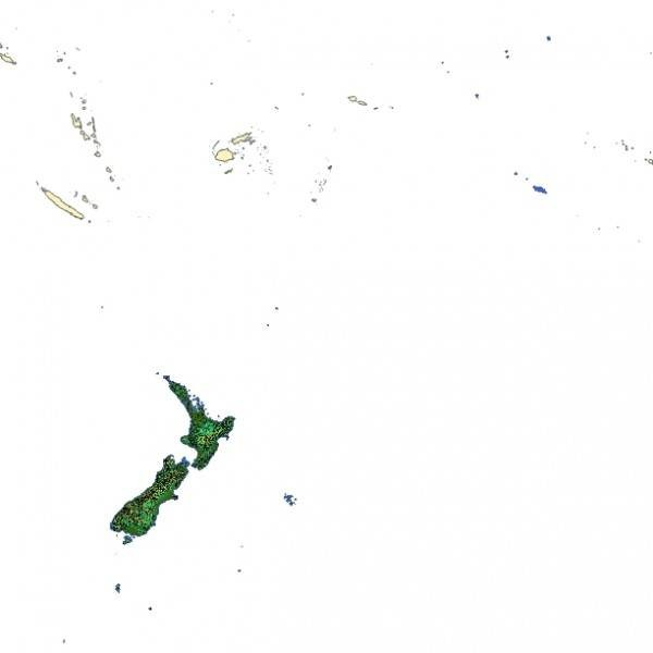 TopoSim - New Zealand - Oceania