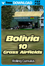 Bolivia - 10 Grass Airfields (FSX/FSX:SE/P3Dv4)